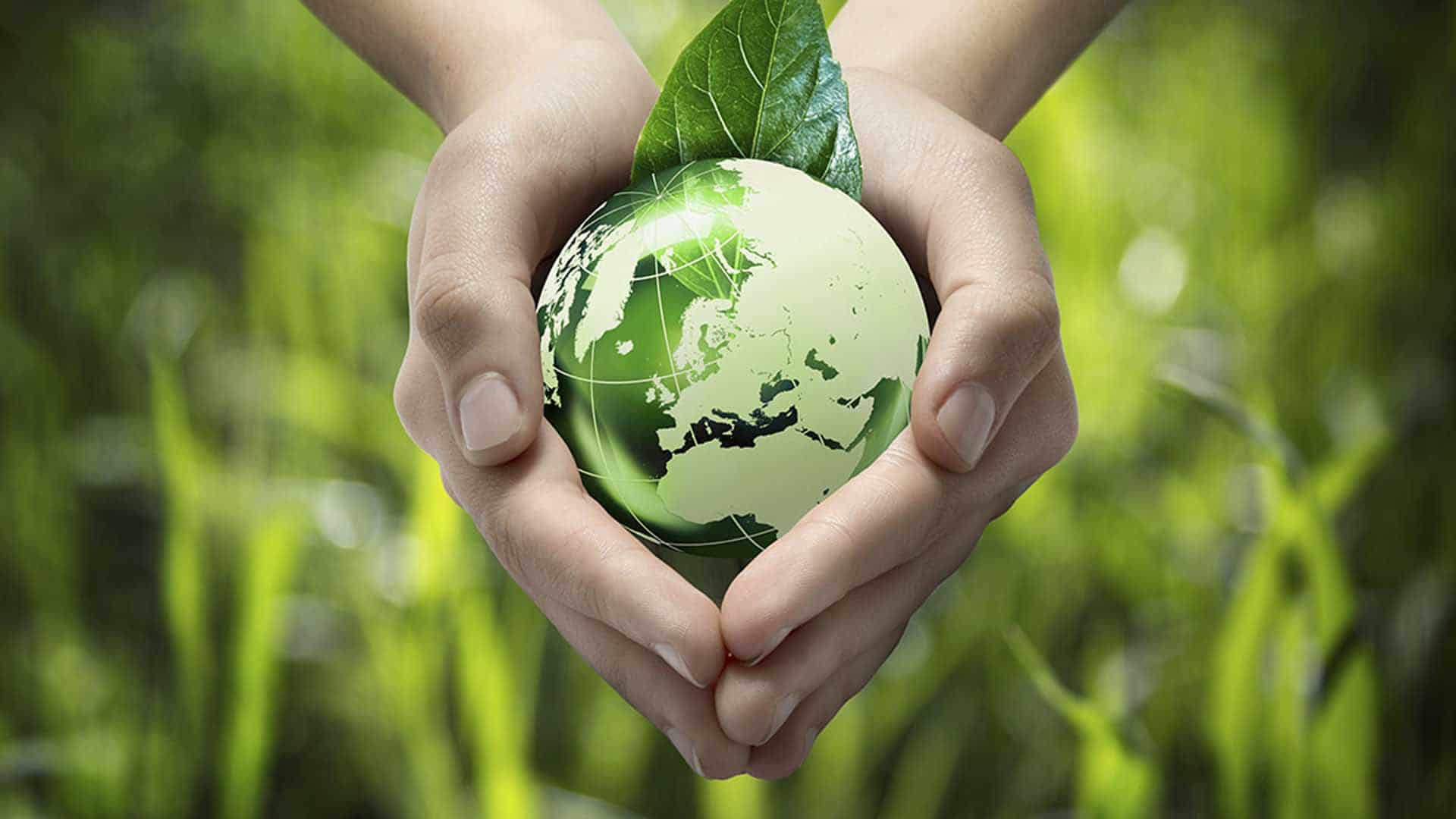 Five Hazardous Waste Disposal Methods Explained | Natural Environment